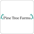 PINE TREE FARMS Logo